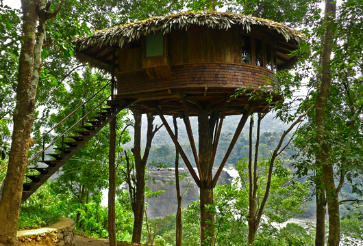 Tree House Stay Tour Operators In Kerala
